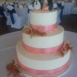 Jessie's Wedding Cake