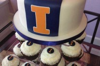 Illini Graduation Cake and Cupcakes