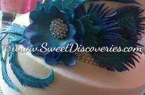 Joey's Peacock Cake